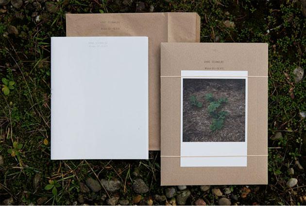 WIESE XXI - XLVIII / Anne Schwalbe