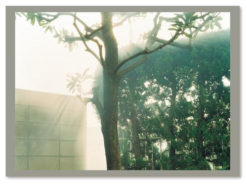 photograph / 濱田祐史